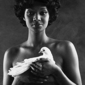 Marcel Giro fotoclubismo  fotografia  brazilian artistas artists contemporaneo  contemporary retrato portrait conceptual Moma exposición